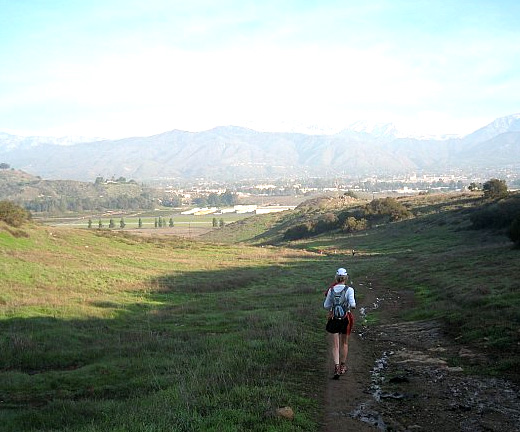 Bonelli Park trail view 2
